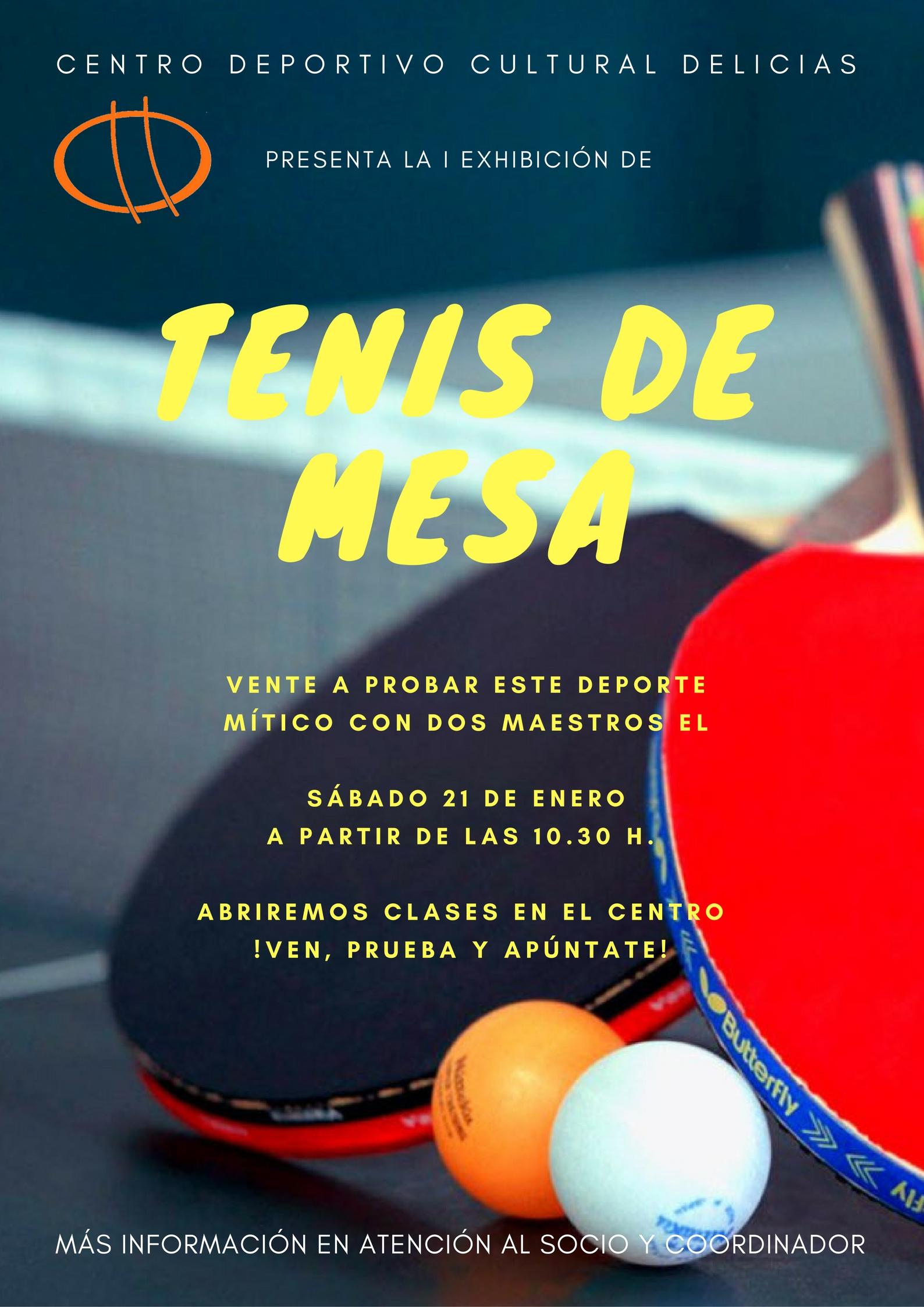 tenis-de-mesa2